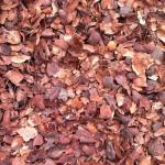 Kakaoflis udlagt